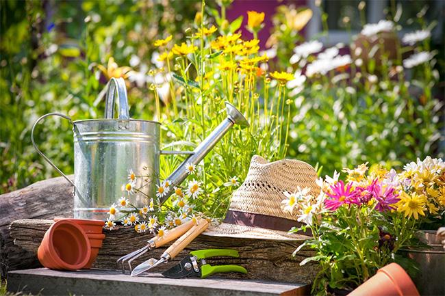 Aménager son jardin dès la construction de sa maison - Ma Future Maison